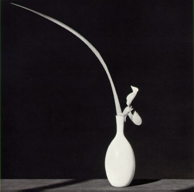 mapplethorpe_white_vase.jpg